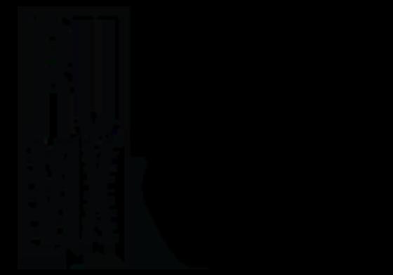 Ruvix Media